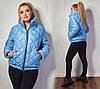 Короткая женская куртка на молнии с карманами синтепон 100 48- 50, 52-54, 56-58, фото 4
