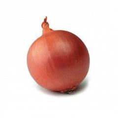 Семена лука весовые