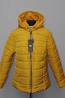 Красива демесезонная жіноча куртка Великих розмірів 48р-54р, фото 1