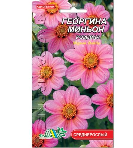 Георгина миньон розовая цветы однолетние низкорослые, семена 0.15 г
