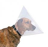 Защитный воротник для собак и кошек (22-25 см/ 7,5 см) 19480, фото 2