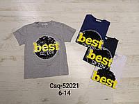 Футболки  для мальчиков оптом, размеры 6-14 лет, Seagull, арт. CSQ 52021, фото 1