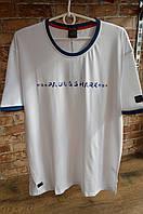 5007-мужская футболка Paul Shark - увеличенного размера -2020. Белая, фото 1