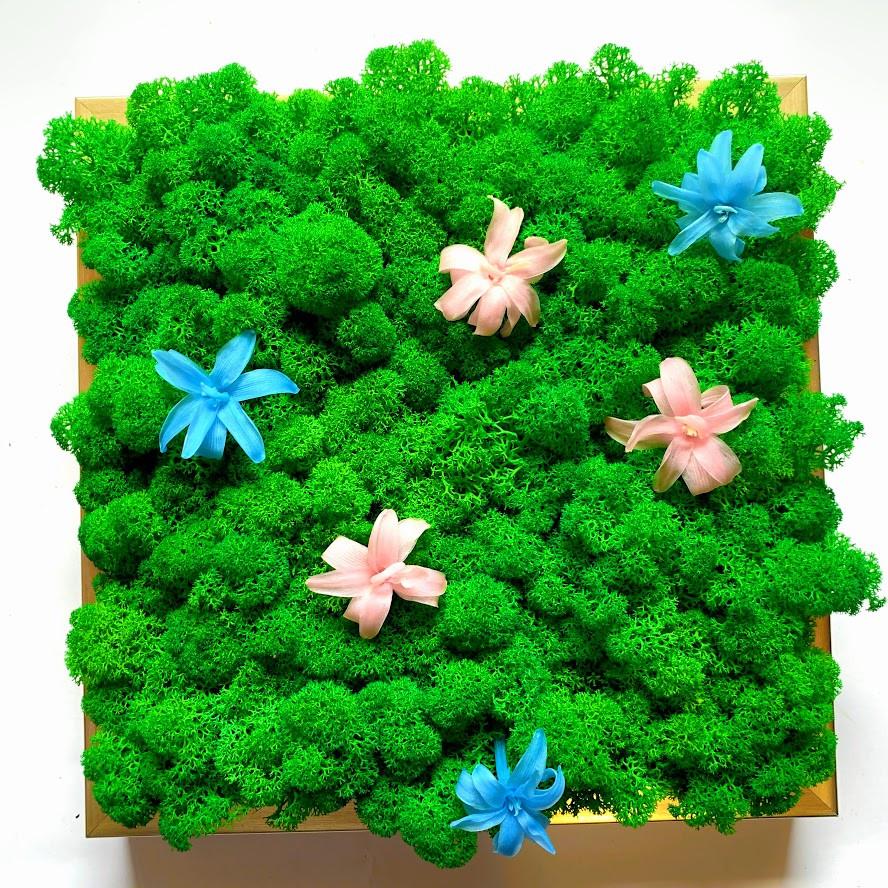 """Картина """"Весна"""" из мха и цветочков"""