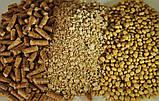 Соєвий шрот гранульований кормовий, фото 5