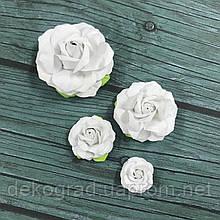 Набор роза белая
