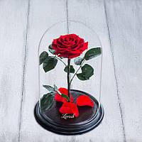 Стабилизированная роза в колбе Lerosh - Premium+ 33 см,  Красный - ORIGINAL LEROSH, фото 1