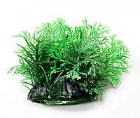 Искусственное растение для аквариума Р074082-8 см