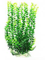 Искусственное растение для аквариума Р047652-65 см
