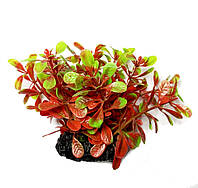 Искусственное растение для аквариума Р220081-6 см