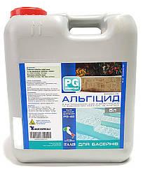 PG-42 Альгицид 5 л для бассейна концентрированный с бактерицидным эффектом
