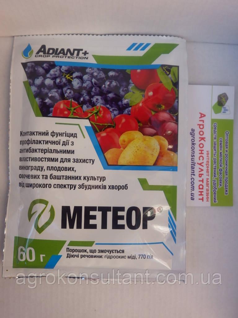 Метеор (Adiant+), 60 м - контактний фунгіцид широкого спектру дії, з антибактеріальними властивостями
