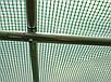 Садовая теплица тонель 10m2 с окнами 4x2,5м, фото 6