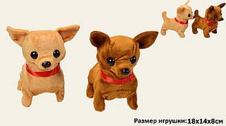 Музична собака M039 (280шт/2) 2 види, батар., розмір іграшки 18*14*8 см