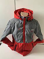 Стильная мужская демисезонная куртка Nike спорт стиль Размеры 48-56