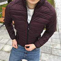 Мужская куртка весенняя бордо