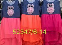 Платье с совушкой для девочек 6/14 лет, фото 1
