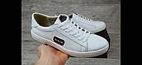 Philipp Plein мужские кожаные кеды кроссовки туфли белые 45 46