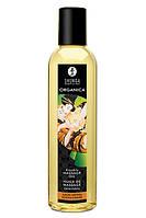 Масло для эротического массажа с ароматом миндаля Shunga