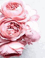 Рисование по номерам Роза садовая (BK-GX27648) 40 х 50 см (Без коробки)