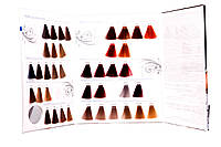 Фарб-карта крем-краски Hair Company Light Gomage