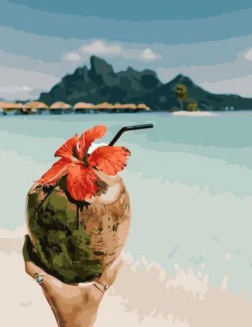 Живопись по номерам Вкус кокоса GX28164 Rainbow Art 40 х 50 см (без коробки)