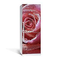 Вінілова наклейка на холодильник Ніжна троянда ламінована подвійна плівка фотодрук роса бутон квіти
