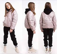 Куртка детская демисезонная лак для девочки без капюшона Доминика  на рост 122,128,134, 140, 146,152, 158, 164, фото 3