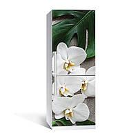 Вінілова наклейка на холодильник Орхідея Монстера ламінована подвійна плівка фотодрук квіти білі