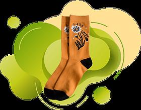 Шкарпетки жіночі