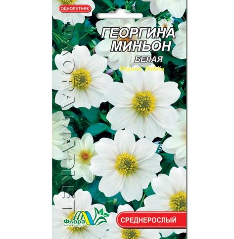 Георгина миньон белая  цветы однолетние низкорослые, семена 0.15 г