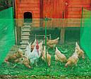 Забор садовый,ячейка 13х13мм рулон 1м х 20м (пластиковый)темно и светло зеленый, фото 5