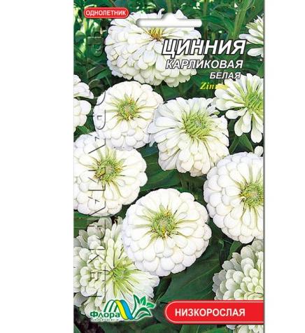 Цинния карликовая белая цветы однолетние, семена 0.2 г
