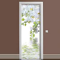 Вінілова наклейка на двері великі Білі орхідеї ламінована подвійна (плівка фотодрук квіти)