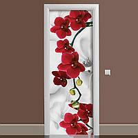 Виниловая наклейка на дверь Красная Орхидея ламинированная двойная (пленка фотопечать цветы абстракция)