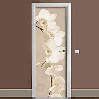 Вінілова наклейка на двері Орхідея Беж ламінована подвійна (плівка фотодрук квіти)
