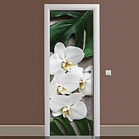 Виниловая наклейка на дверь Орхидея Монстера ламинированная двойная (пленка фотопечать цветы белые)
