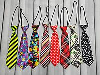 Яркие галстуки, фото 1