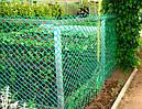 Забор садовый,ячейка 50х50мм рулон 1м х 20м (пластиковый)темно и светло зеленый, фото 3