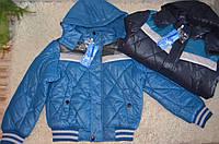 Зимняя куртка на синтепоне для мальчиков  Nature,4-14 лет
