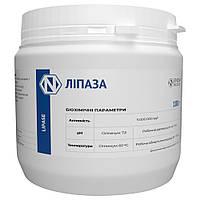 Липаза (Lipase) - Фермент для расщепления жира