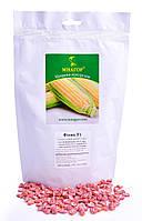 Сахарная кукуруза Фиона F1, 4000 семян на 6 соток, раннеспелый (69-71 дней), Sh2-тип, фото 1