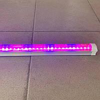 Фито Fito Светильник Светодиодный Ledmax 16 Вт 1200мм