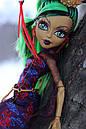 Кукла Monster High Джинафаер Лонг (Jinafire Long) Путешествие в Скариж Монстер Хай Школа монстров, фото 6