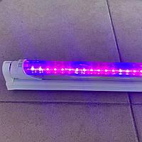 Фито Fito Лампа Светодиодная 8 вт Ledmax Т8 G13 600мм Трубчатая