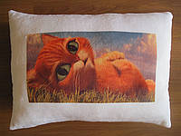 Декоративная подушка Кот в сапогах из Шрека