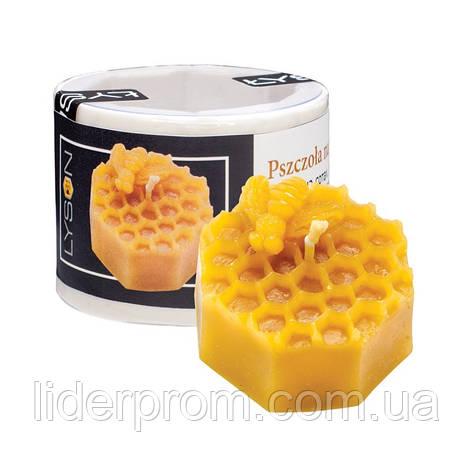"""Форма  силіконова для виготовлення свічок """" Бджола на сотах """"LYSON Польща, фото 2"""