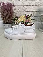 39 р. Кроссовки женские белые кожаные на подошве, из натуральной кожи, натуральная кожа, фото 1