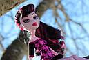 Кукла Monster High Дракулаура (Draculaura) Путешествие в Скариж Монстер Хай Школа монстров, фото 4