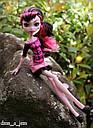 Кукла Monster High Дракулаура (Draculaura) Путешествие в Скариж Монстер Хай Школа монстров, фото 6
